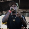 Havoc of Mobb Deep performs at the 11th Annual Brooklyn Hip-Hop Festival held at Williamsburg Park on July 11, 2015 in Brooklyn, NY