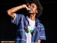 Pro Era on stage at Summerstage 2014