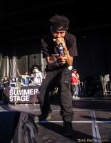 Pro Era @ Summerstage 2014